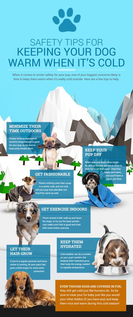 DogSafetyTips_Infographic_1-16-2