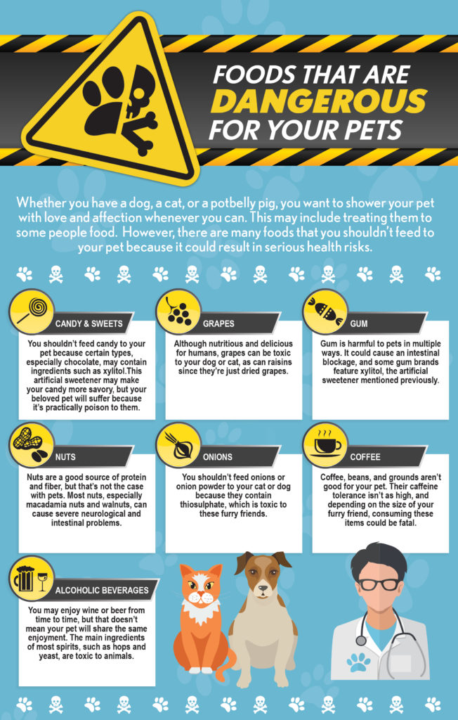 Foods That Are Dangerous For Your Pets